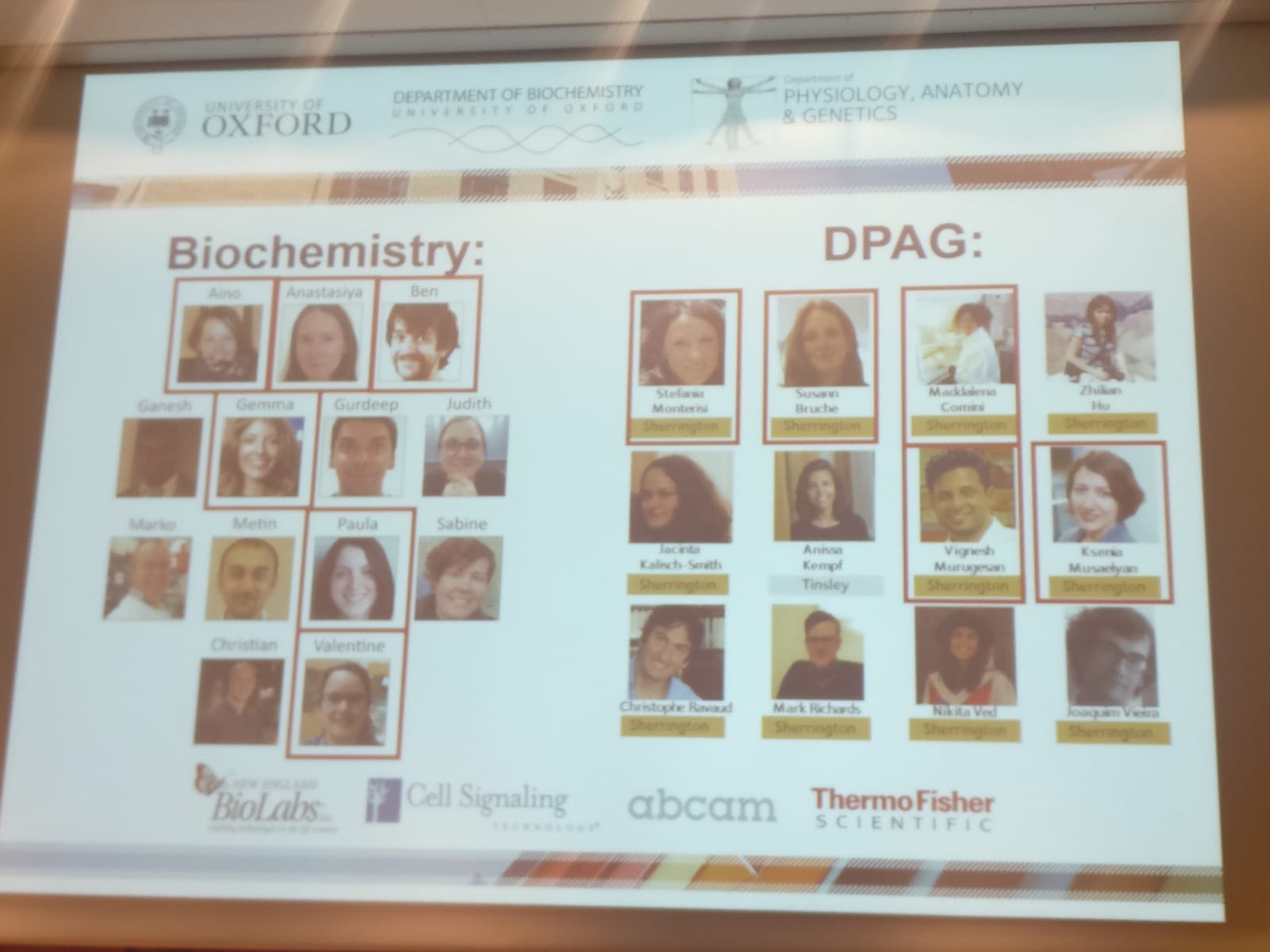 opening slide showing the Biochemistry and DPAG postdoc committees