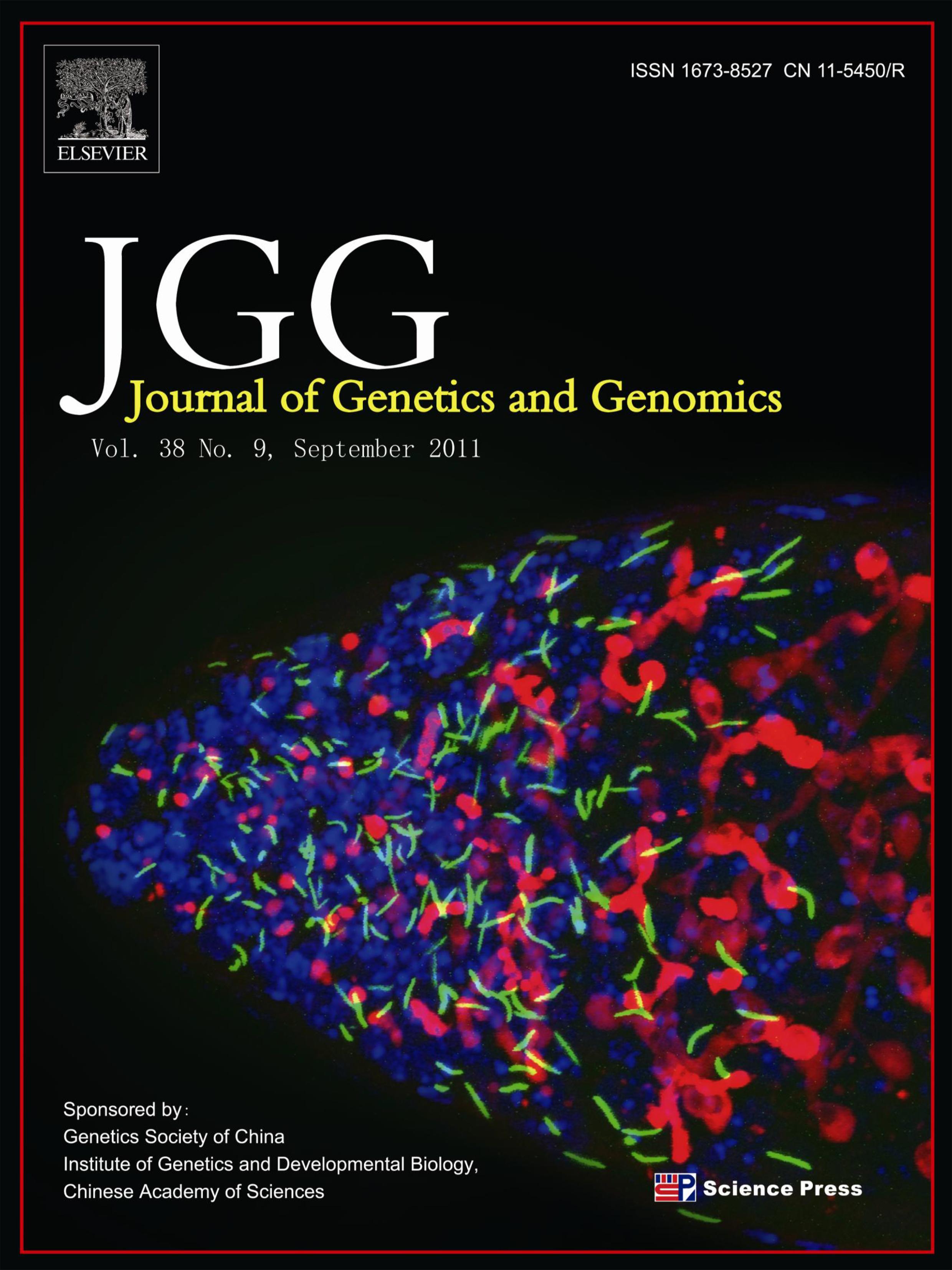 JGG No9