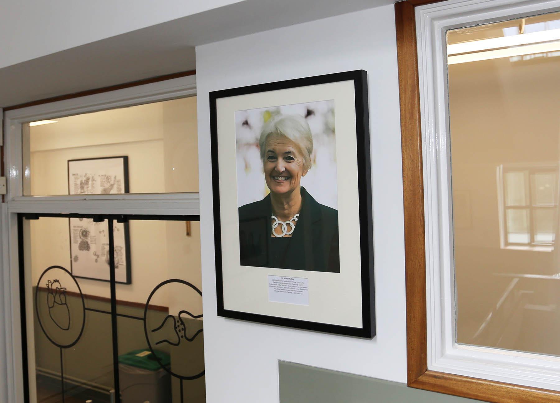 Mary Phillips Sherrington display
